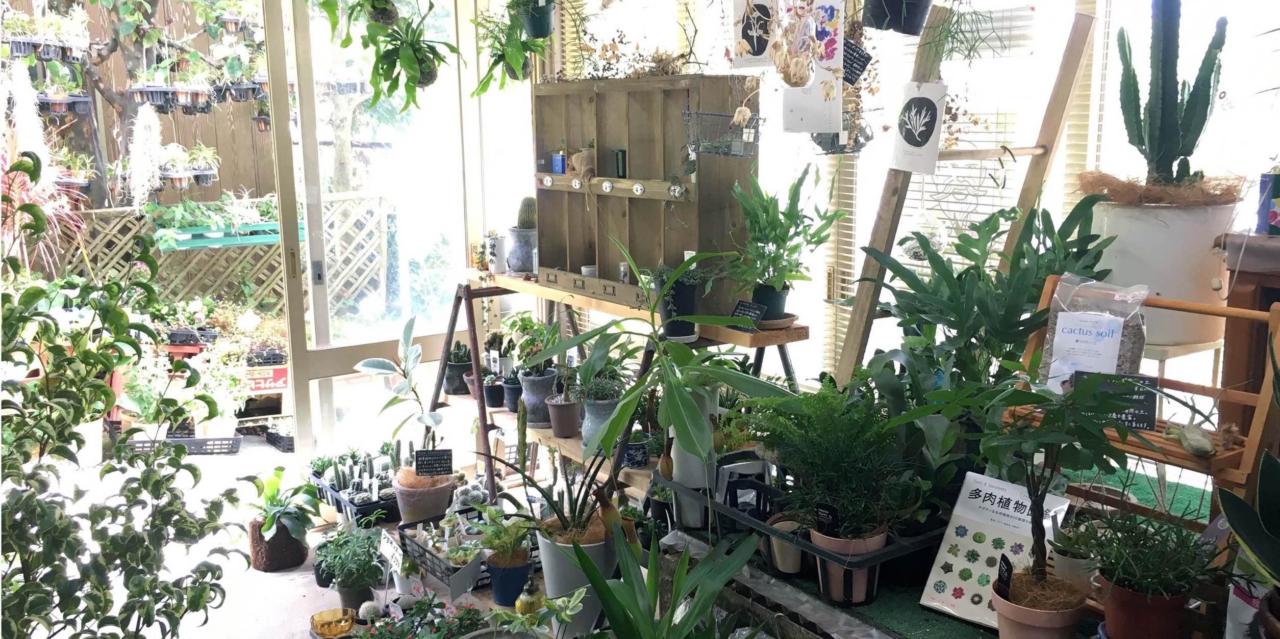みのりや種苗園芸