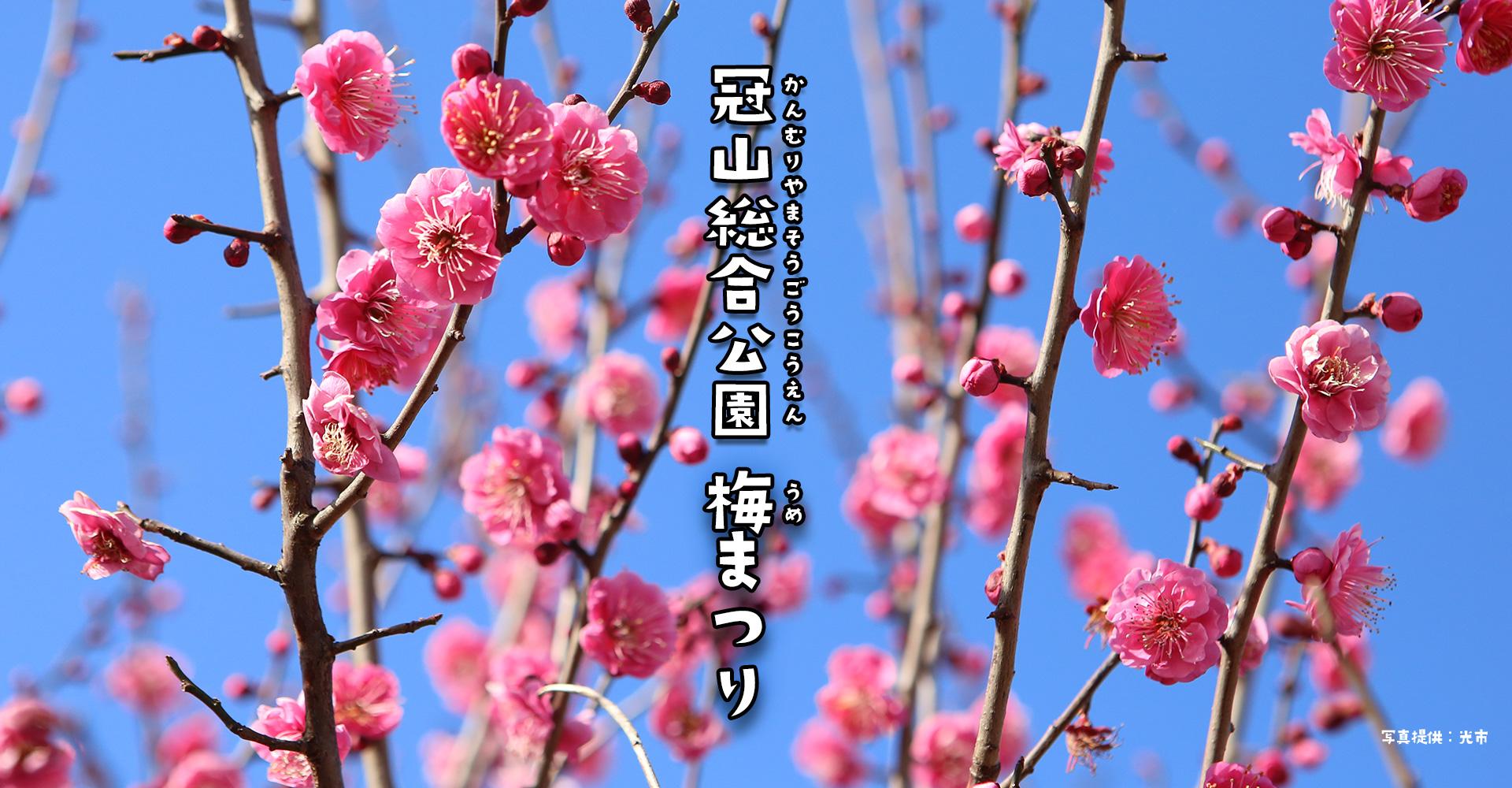 画像:梅まつり